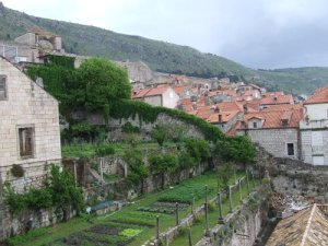 Dubrovnik, Croatia via About.com