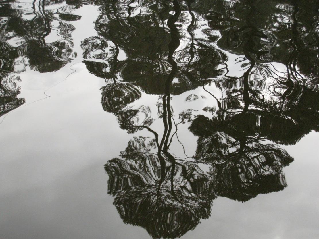 Jonny Lake