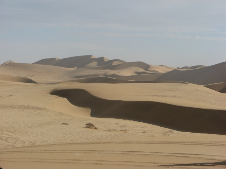 We don't want the Amazon to turn into this. Although Namibian deserts are beautiful, let's keep them in Namibia.