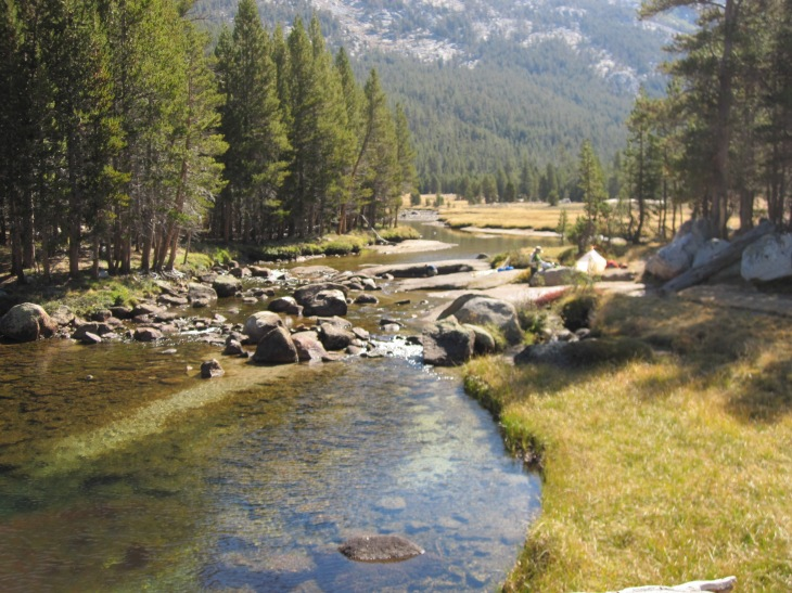 We want our grandchildren and great-grandchildren to be able to enjoy things like these (Yosemite National Park, California)