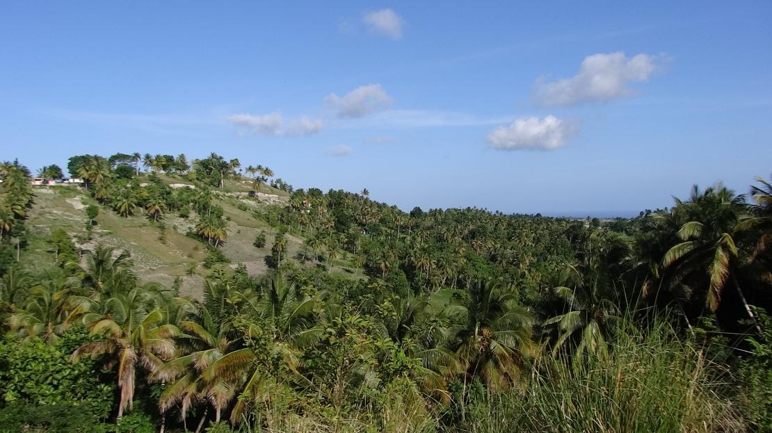 haiti2014 (1)